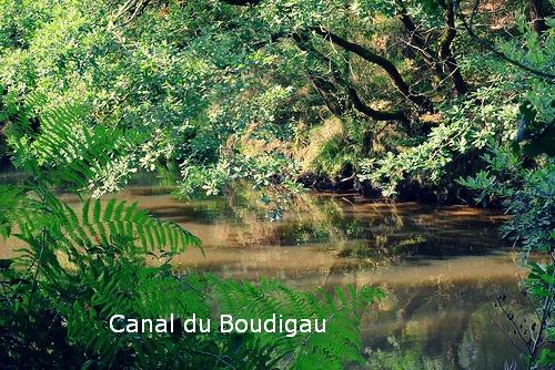 Canal du boudigau
