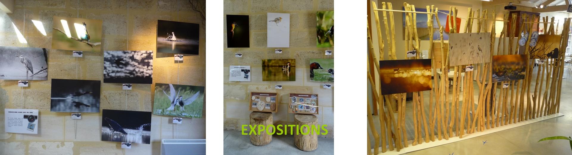 Expositions Terres d