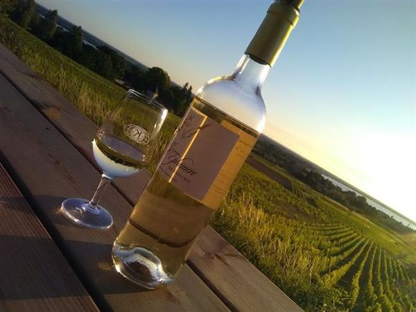 Wine & sunset at Château Saincrit