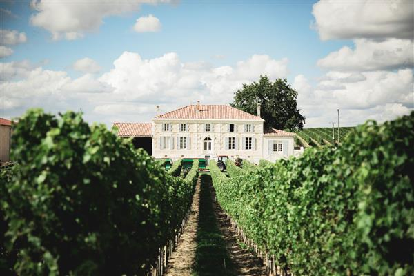 Stroll and diner at the Domaine Maison de la Reine - Copie